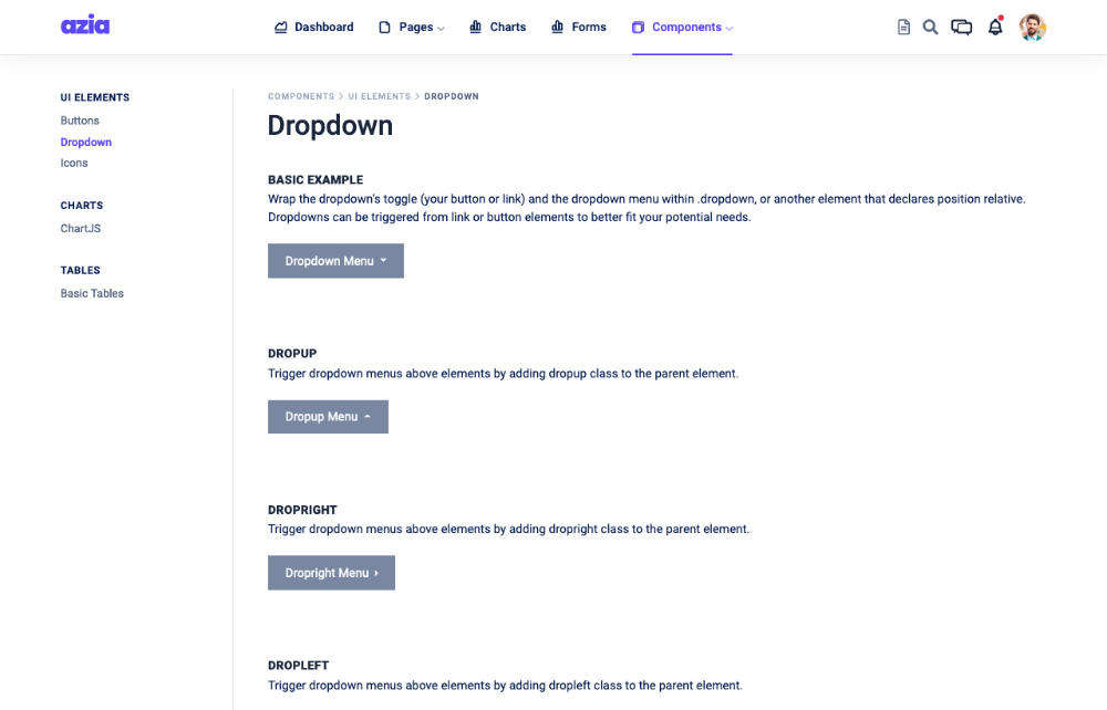 dropdowns